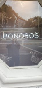 bonobosneoncoralgables
